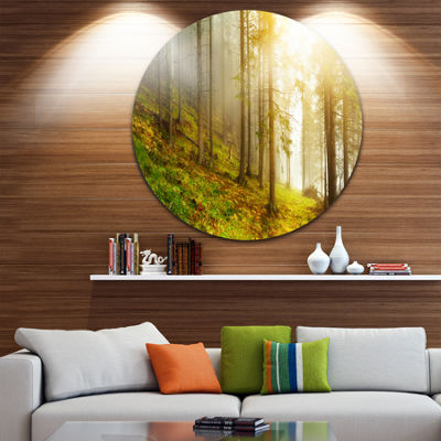 Design Art Sun Finds its Way in Forest Landscape Photography Circle Metal Wall Art