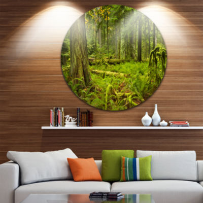 Design Art Lush Rainforest in Cathedral Grove Landscape Circle Metal Wall Art