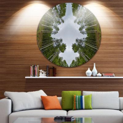 Designart Circle Composition of Coniferous TreesLandscape Circle Metal Wall Art