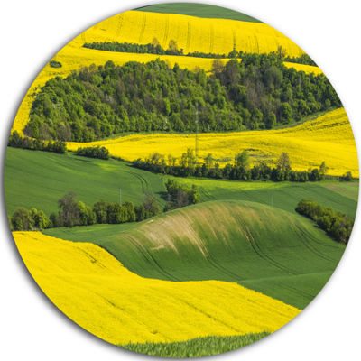 Designart Rapeseed Fields and Green Wheat Landscape Circle Metal Wall Art