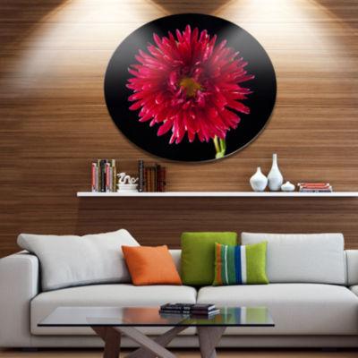 Designart Chrysanthemum Flower on Black Disc Flowers Large Metal Circle Wall Artwork