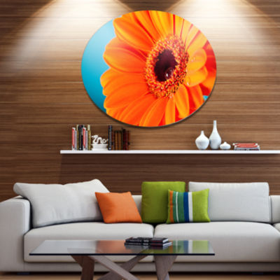 Designart Orange Daisy Gerbera Flower Close up Disc Flowers Large Metal Circle Wall Artwork