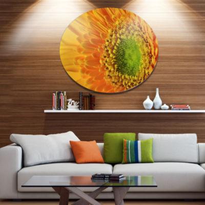Designart Yellow Daisy Gerbera Flower Close up Disc Flowers Large Metal Circle Wall Artwork
