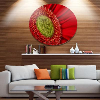 Designart Red Daisy Gerbera Flower Close up Disc Flowers Large Metal Circle Wall Artwork