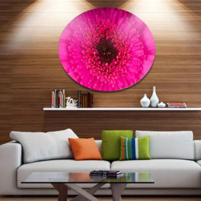 Designart Macro Photo of Gerbera Flower Disc Flowers Large Metal Circle Wall Artwork