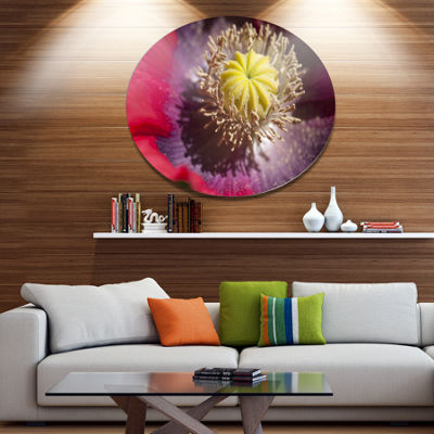 Designart Colorful Opium Poppy Flower Photo Disc Flowers Large Metal Circle Wall Artwork