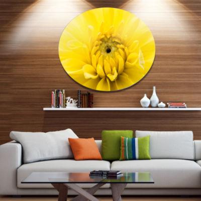 Designart Yellow Chrysanthemum Gold Flower Disc Flower Artwork on Large Metal Circle Wall Art