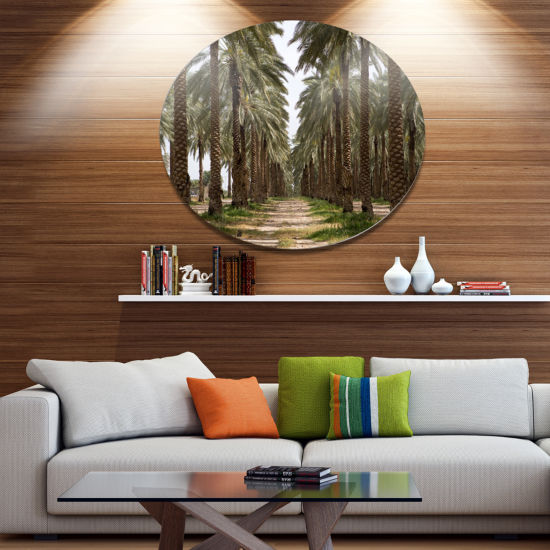 Designart Date Palm Plantation Photography Disc Forest Large Metal Circle Wall Art