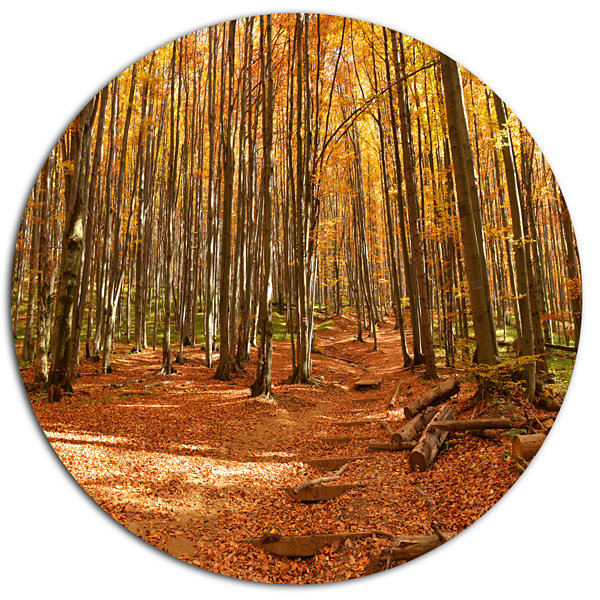Designart Colorful Fall Forest with Fallen LeavesDisc Forest Large Metal Circle Wall Art
