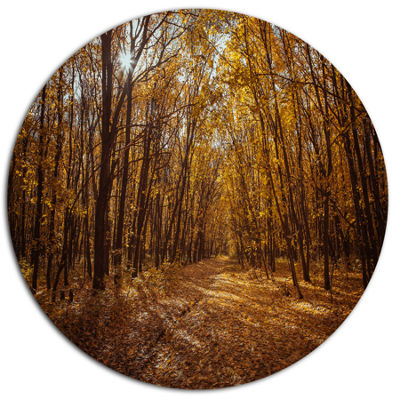 Designart Sunset in Yellow Autumn Forest Disc Forest Large Metal Circle Wall Art