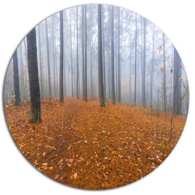Designart Foggy Forest and Fallen Leaves Disc Forest Large Metal Circle Wall Art