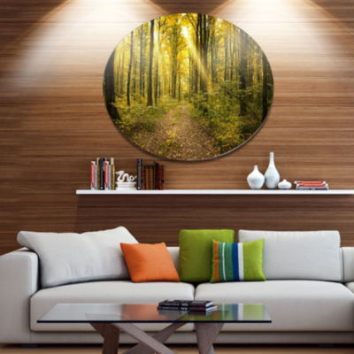 Designart Sunset in Green Autumn Forest Disc Forest Large Metal Circle Wall Art