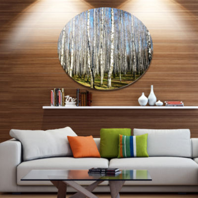 Designart Sunny Autumn Birch Grove Disc Forest Large Metal Circle Wall Art