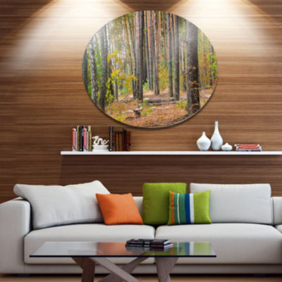 Designart Green Fall Forest with Thick Woods DiscForest Metal Circle Wall Arts