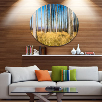Designart Clear Sky and Bush in Thick Forest DiscForest Metal Circle Wall Arts