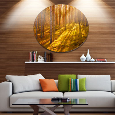 Designart Beautiful Sunrays in Thick Forest Disc Forest Metal Circle Wall Arts