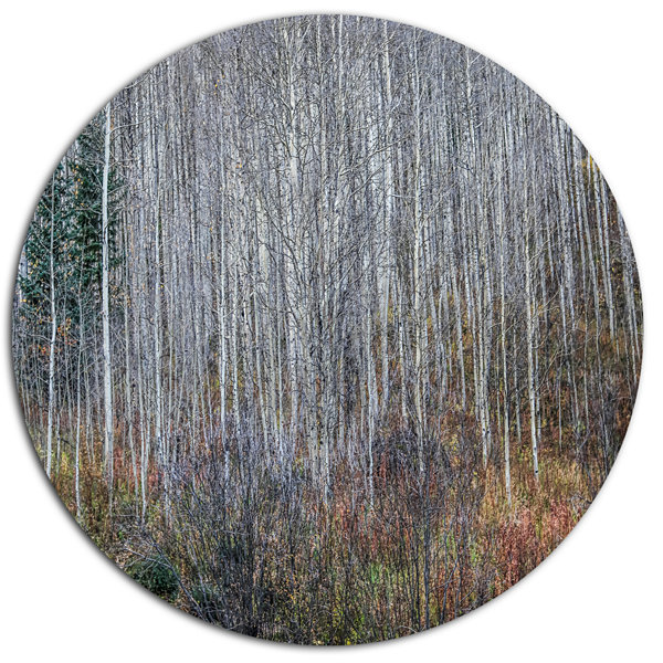 Designart Maroon Bells Mountain View Disc Forest Metal Circle Wall Arts
