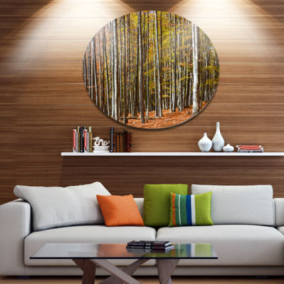 Designart Bright Day in Thick Forest Disc Forest Metal Circle Wall Arts