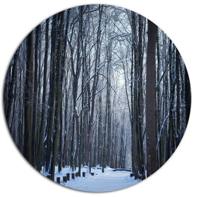 Designart Thick Woods in Winter Forest Disc ForestMetal Circle Wall Arts