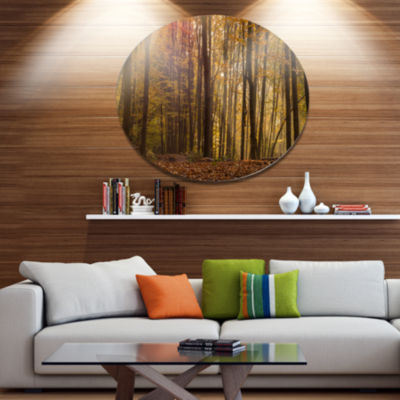 Designart Dense Forest in Rays of Rising Sun DiscForest Metal Circle Wall Art