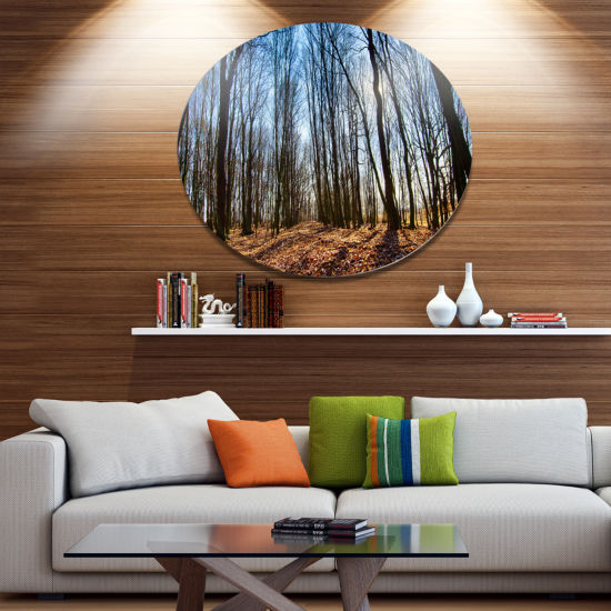 Designart Dark Trees in Forest at Sunrise Disc Forest Metal Circle Wall Art