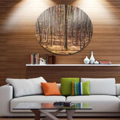 Designart Thick Carpathian Deciduous Forest Disc Forest Metal Circle Wall Art