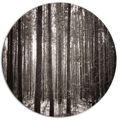 Designart Beautiful Misty Forest in the Autumn Disc Forest Metal Circle Wall Art