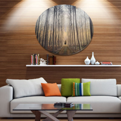 Designart Thick Forest of Poplars at Sunset Disc Forest Metal Circle Wall Art