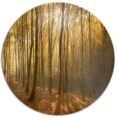 Designart Thick Green Fall Forest with Fog Disc Forest Metal Circle Wall Art
