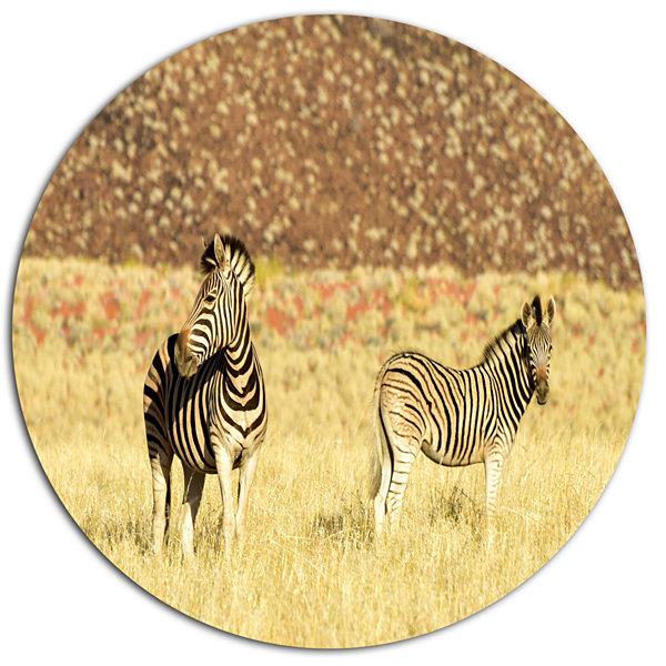 Designart Pair of Zebras in Namib DesertAnimal Metal Circle Wall Art ...