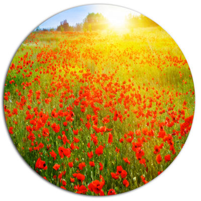 Designart Beautiful Sunshine over Poppy Fields Disc Floral Metal Circle Wall Art