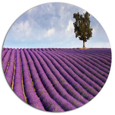 Designart Lone Tree in Provence Lavender Field Disc Landscape Metal Circle Wall Art