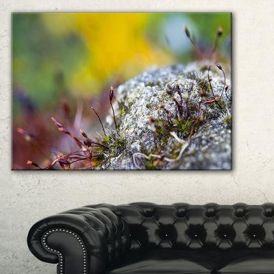 Designart Abstract Composition Of Moss Flowers Canvas Art