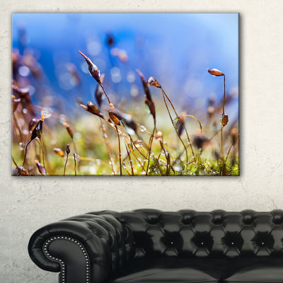 Designart Abstract Summer Spring Moss Flowers Canvas Art