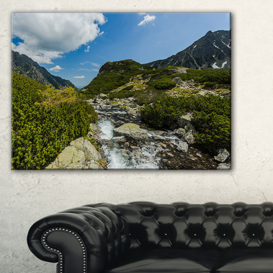 Designart Alpine Stream In High Mountains Canvas Art