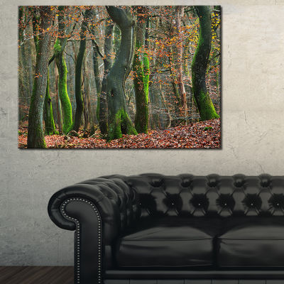 Designart Autumn Forest In The Netherlands 3-pc. Canvas Art