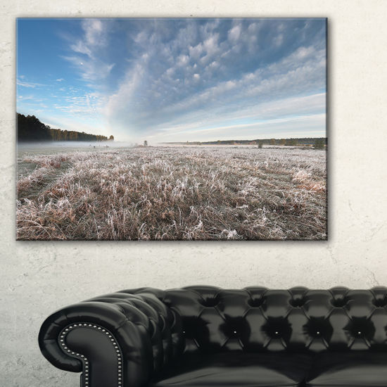 Designart Autumn Hoarfrost On Grass Canvas Art