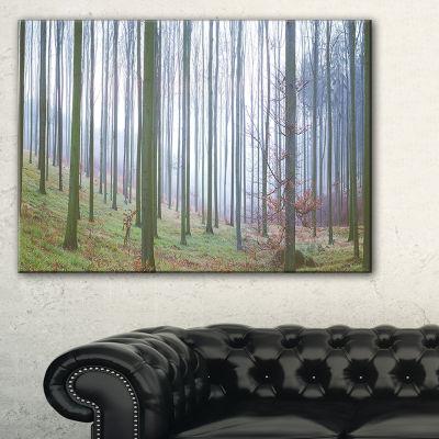 Designart Autumn Tree Trunks Panoramawork Canvas Art
