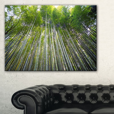 Designart Bamboo Forest Of Kyoto Japan. Canvas Art
