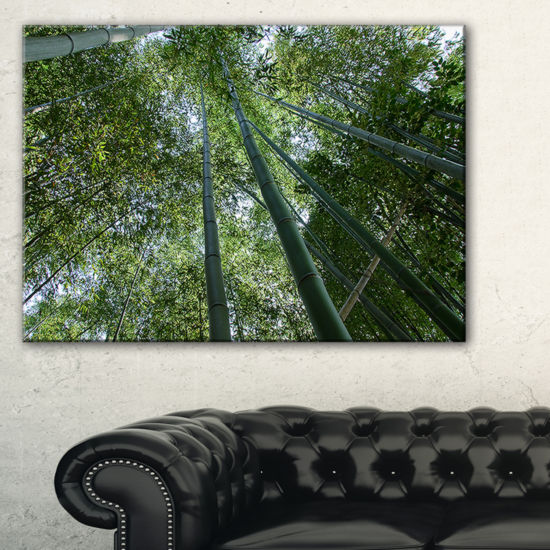 Designart Bamboo Forest Seen From Ground Canvas Art
