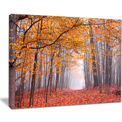 Designart Beautiful Trees With Fallen Leaves Canvas Art