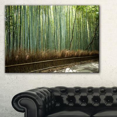 Designart Beautiful View Of Bamboo Forest Canvas Art