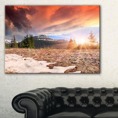 Designart Blooming Crocuses In Mountains Canvas Art