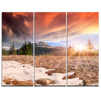Designart Blooming Crocuses In Mountains 3-pc. Canvas Art