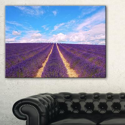 Designart Blooming Lavender Flower Field Canvas Art