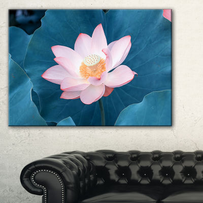 Designart Blooming Pink Lotus Flower Canvas Art