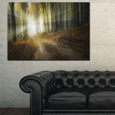 Designart Bright Sun Rays In Colorful Fall Canvas Art