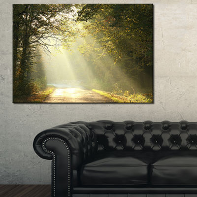 Designart Bright Sunbeams To Fall Forest Canvas Art