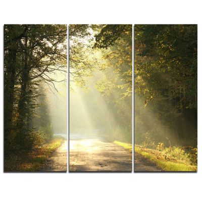 Designart Bright Sunbeams To Fall Forest 3-pc. Canvas Art