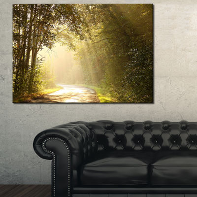 Designart Bright Sunlight In Fall Forest 3-pc. Canvas Art